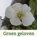 l_GroenGeloven